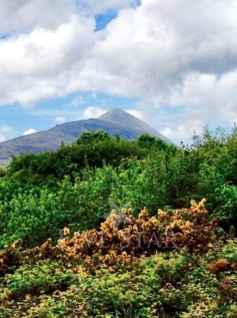 See Croagh Patrick from the house