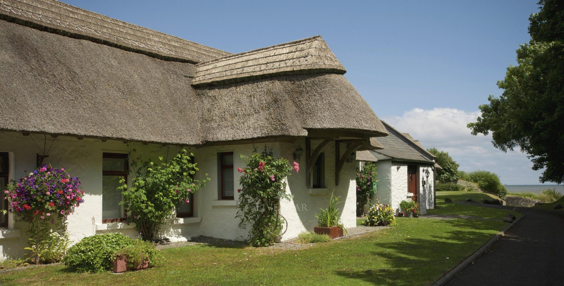Rose cottage 5 star self catering bettystown for Rose cottage