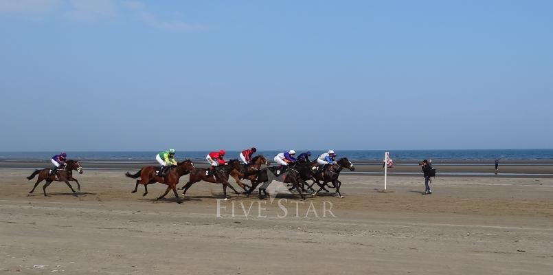 The Laytown Strand Races, racing past the gardens at The Cottages.