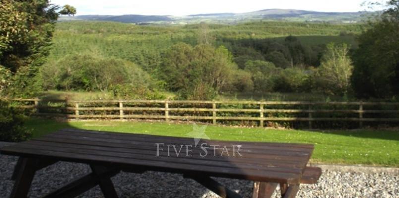 Pine View photo 3