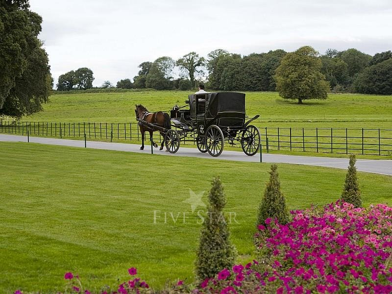 Castlemartyr Resort photo 15