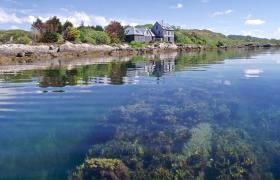 Photo of Mermaid Isle