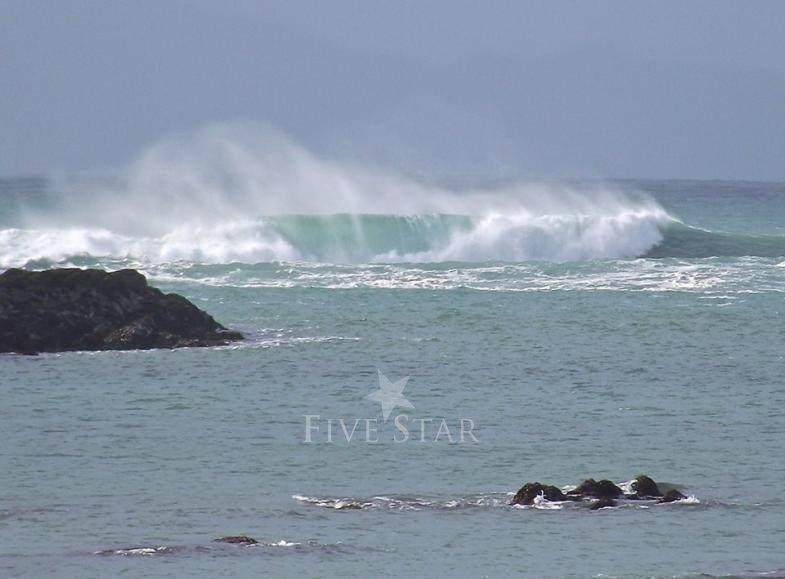 Mermaid Isle photo 36