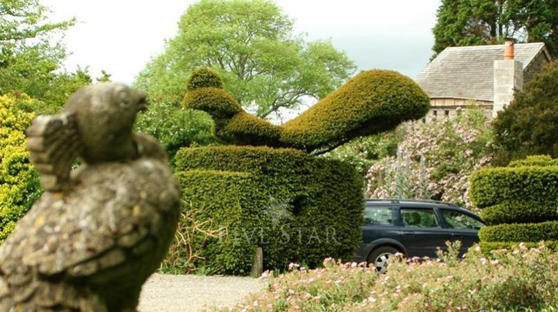 Kilmokea Gardens photo 10