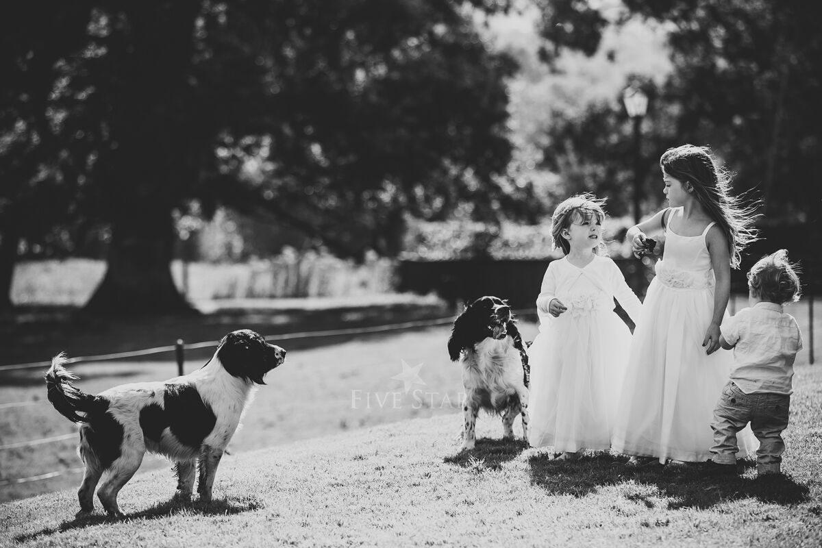 Longueville House Weddings photo 88