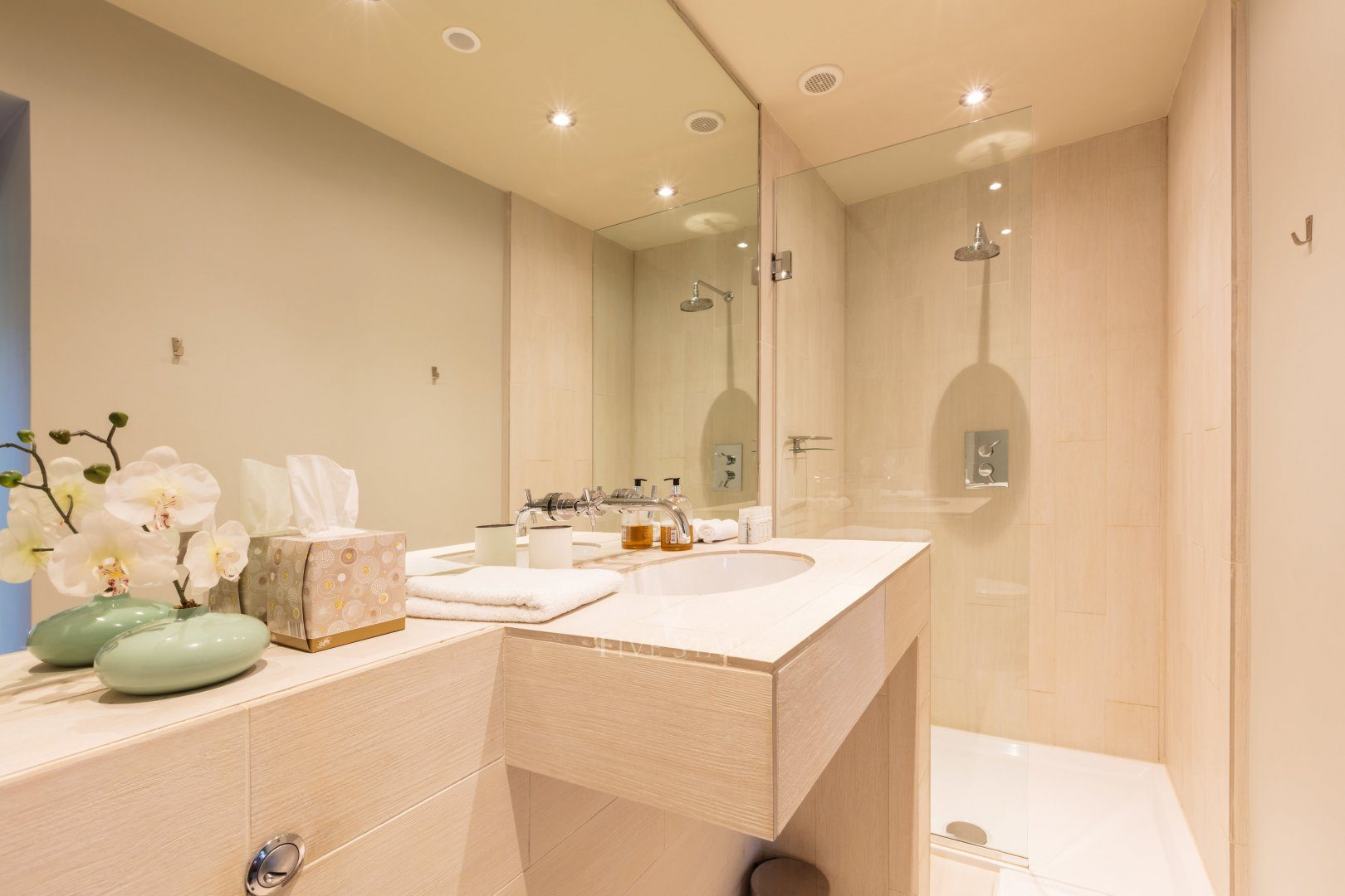 Cathedral Room ensuite