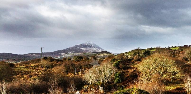 Views of Croagh Patrick from the house