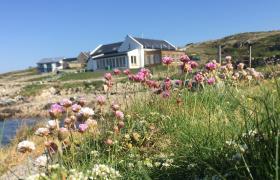 Photo of Cashel Bay Cottage & Beach