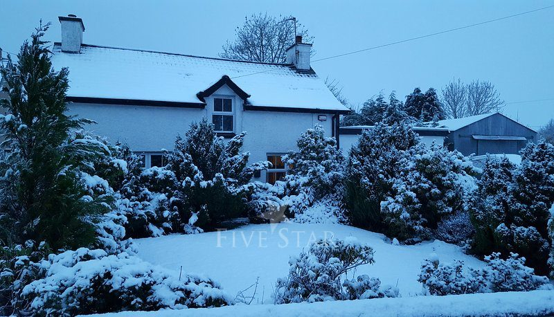 Ballinlea Cottage photo 2