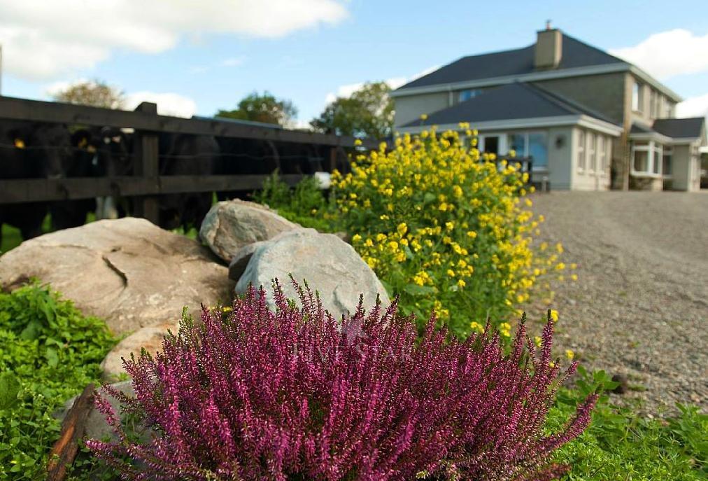 Knockcarrig House, Killarney photo 3