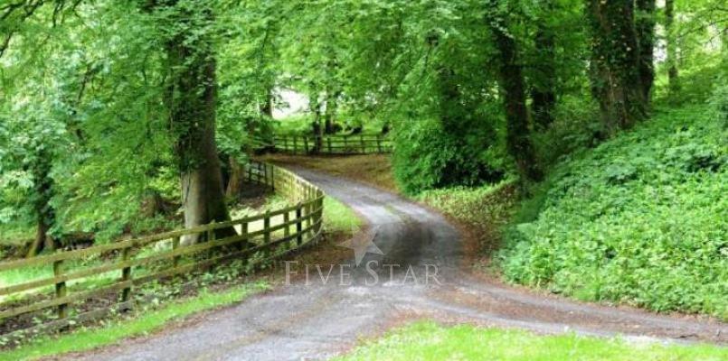 Quinville Abbey photo 4
