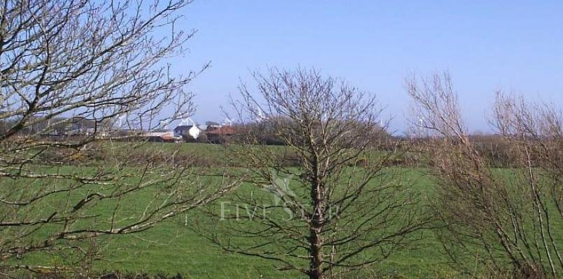 Wexford Haven photo 6