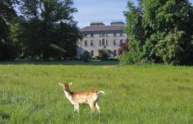 Photo of Coopers Hill Sligo