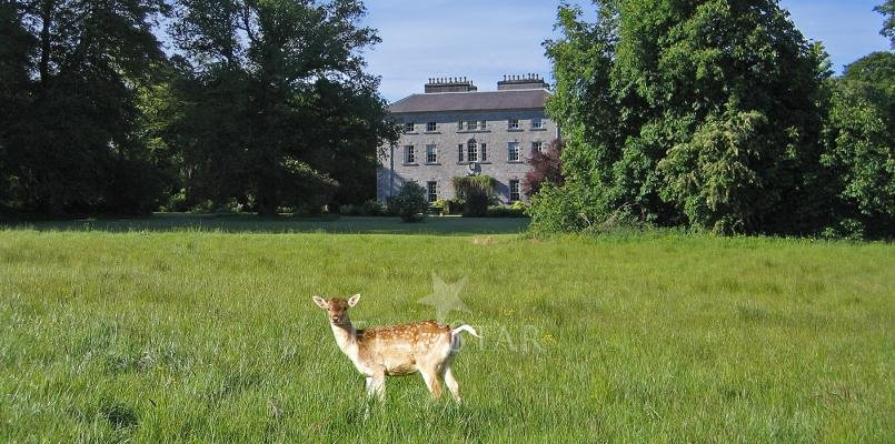 Coopers Hill Sligo photo 1