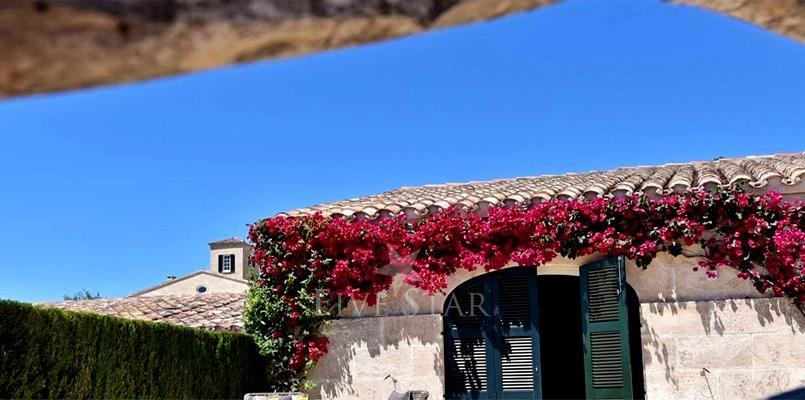 Sant Climent Villa photo 14