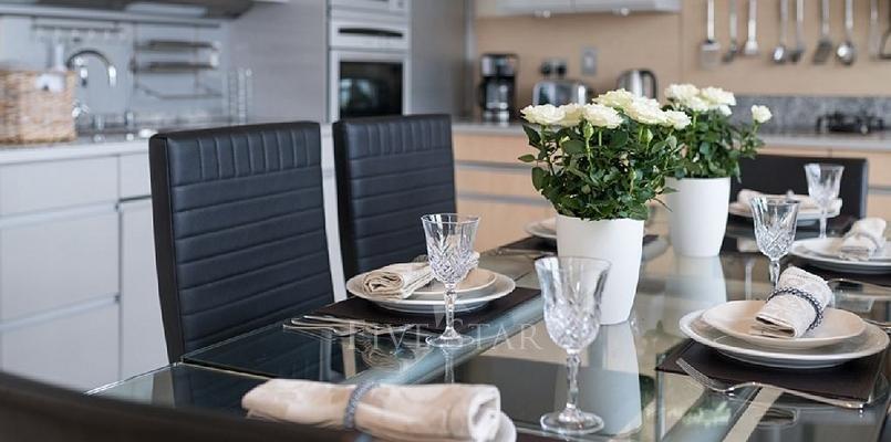 Luxury Penthouse photo 10