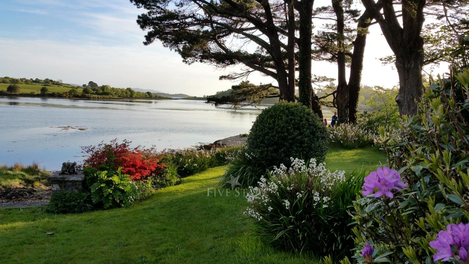 Waters Edge Bantry Bay photo 9