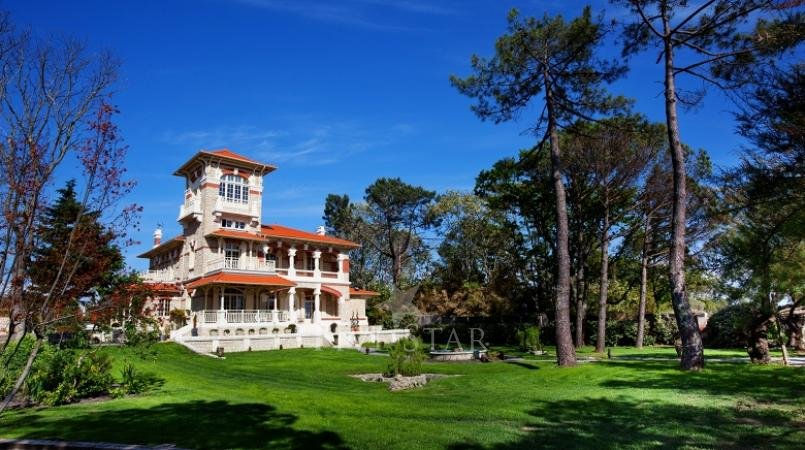 Villa La Tosca photo 4