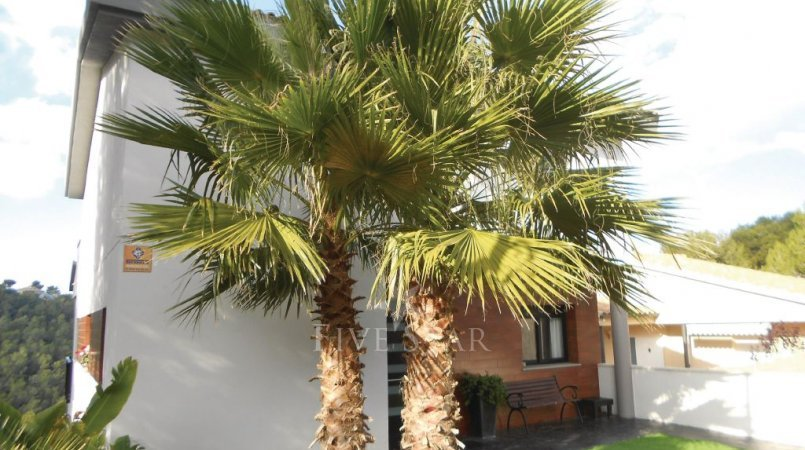 Holiday home Sitges photo 7
