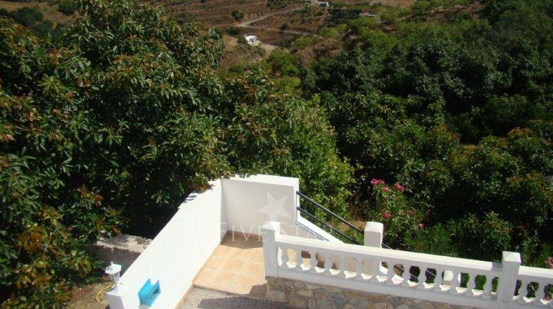 Holiday home Almuñécar photo 7