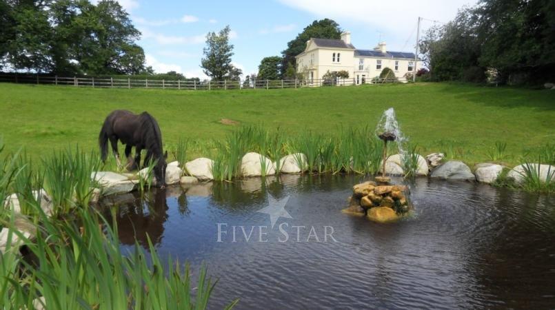 Killarney Lake View photo 4