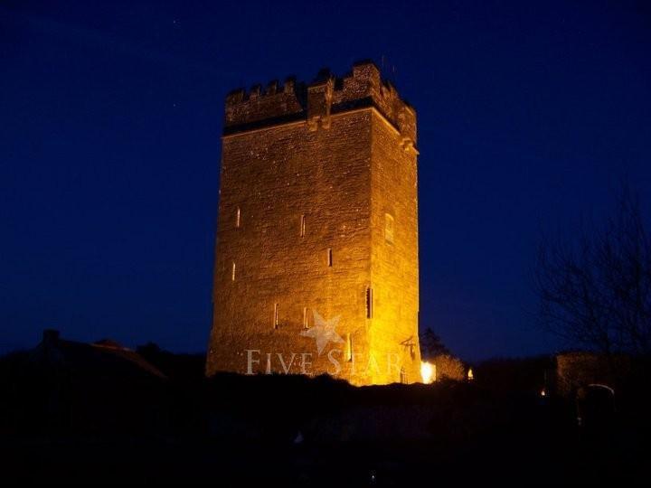 Ballyhannon Castle photo 1