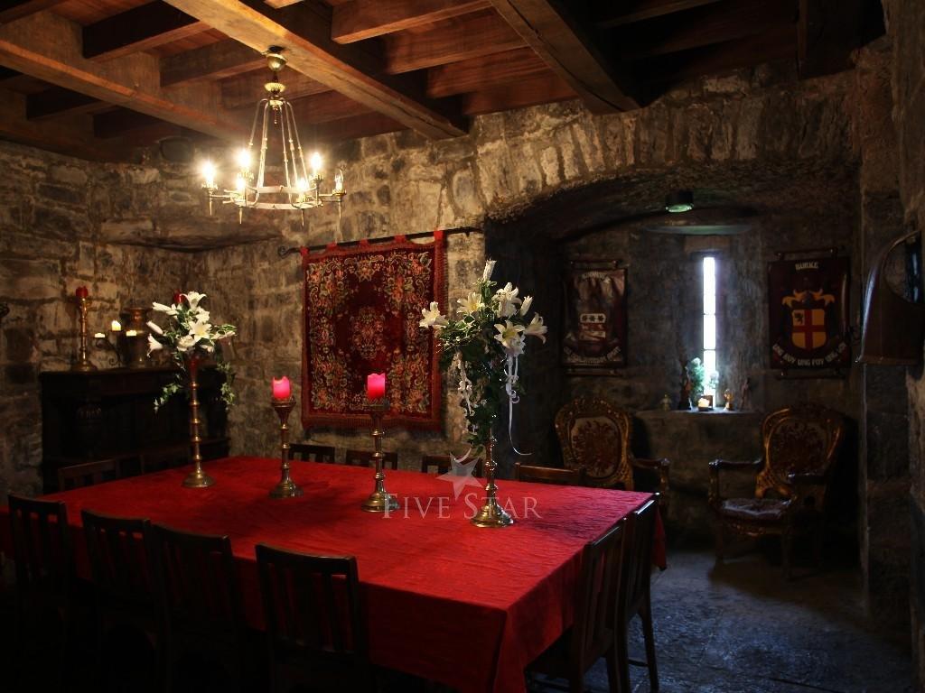 Ballyhannon Castle photo 5