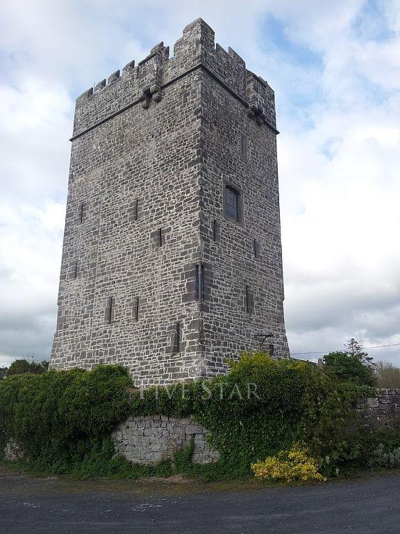 Ballyhannon Castle photo 14