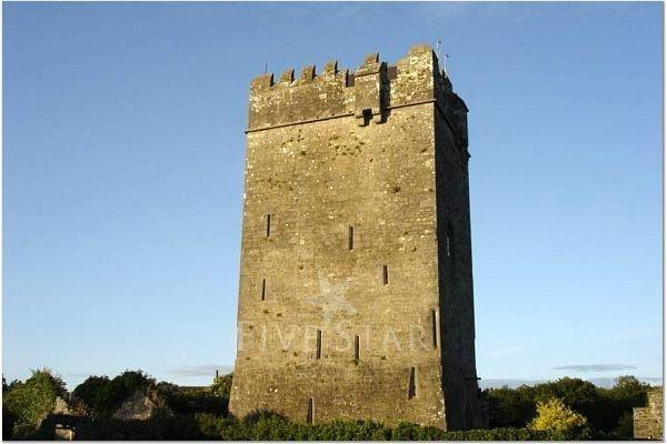 Ballyhannon Castle photo 19