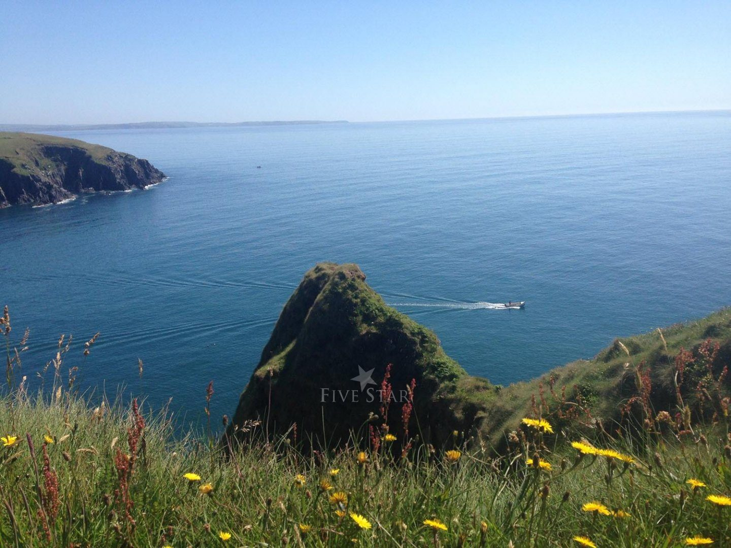 Wildflower Meadows By The Sea photo 12