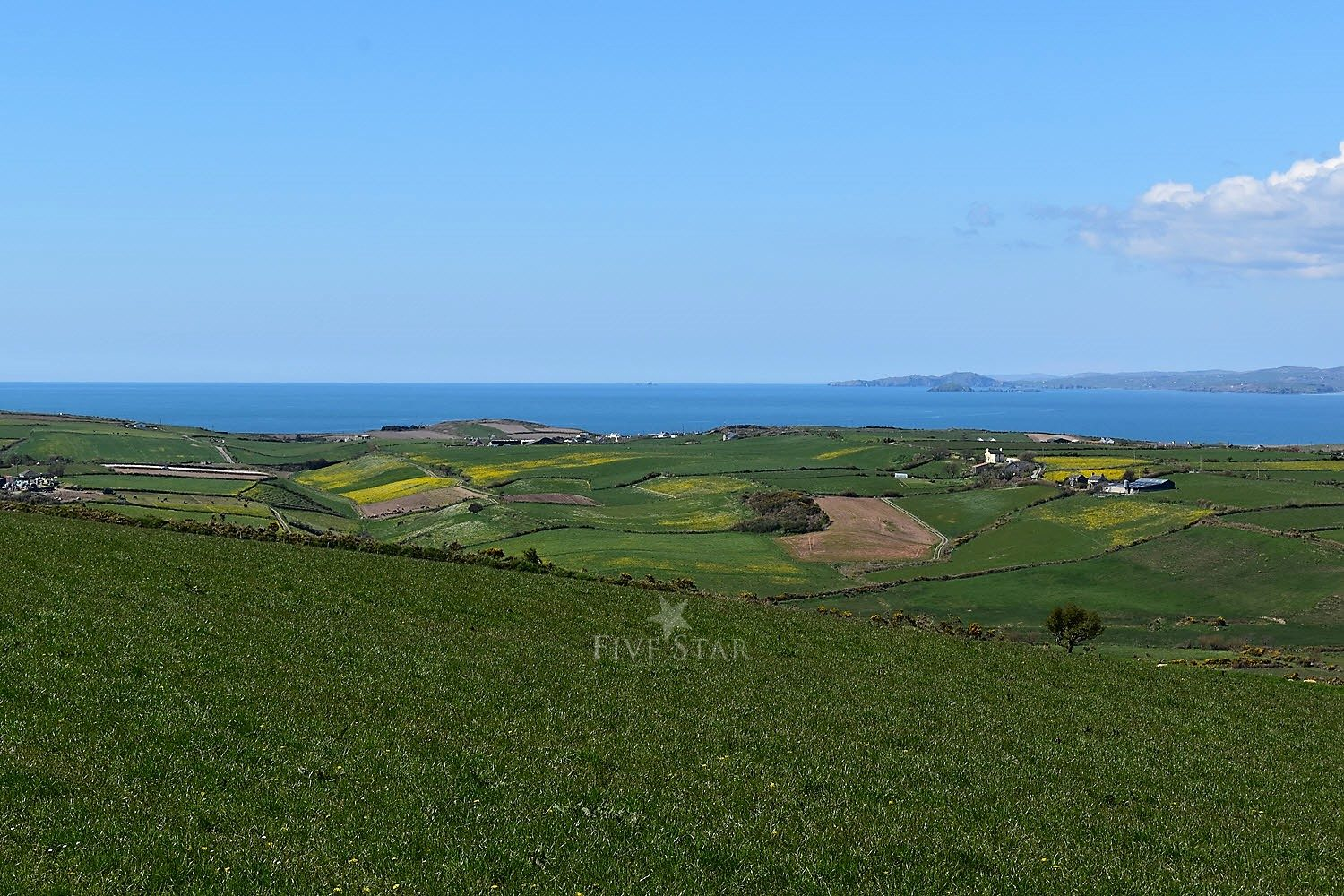 Wildflower Meadows By The Sea photo 51