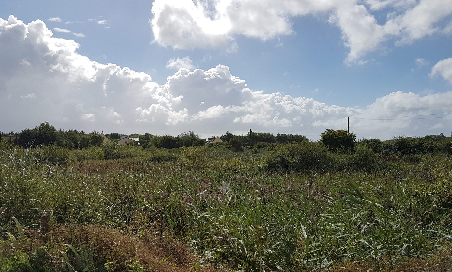 Barna Site For Sale photo 3