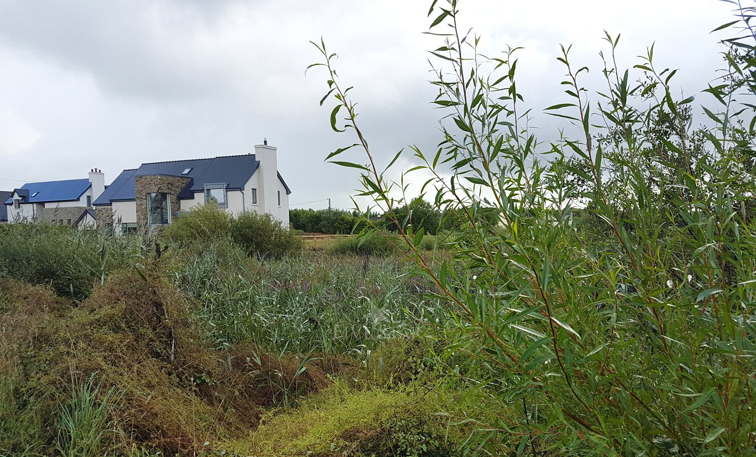 Barna Site For Sale photo 8
