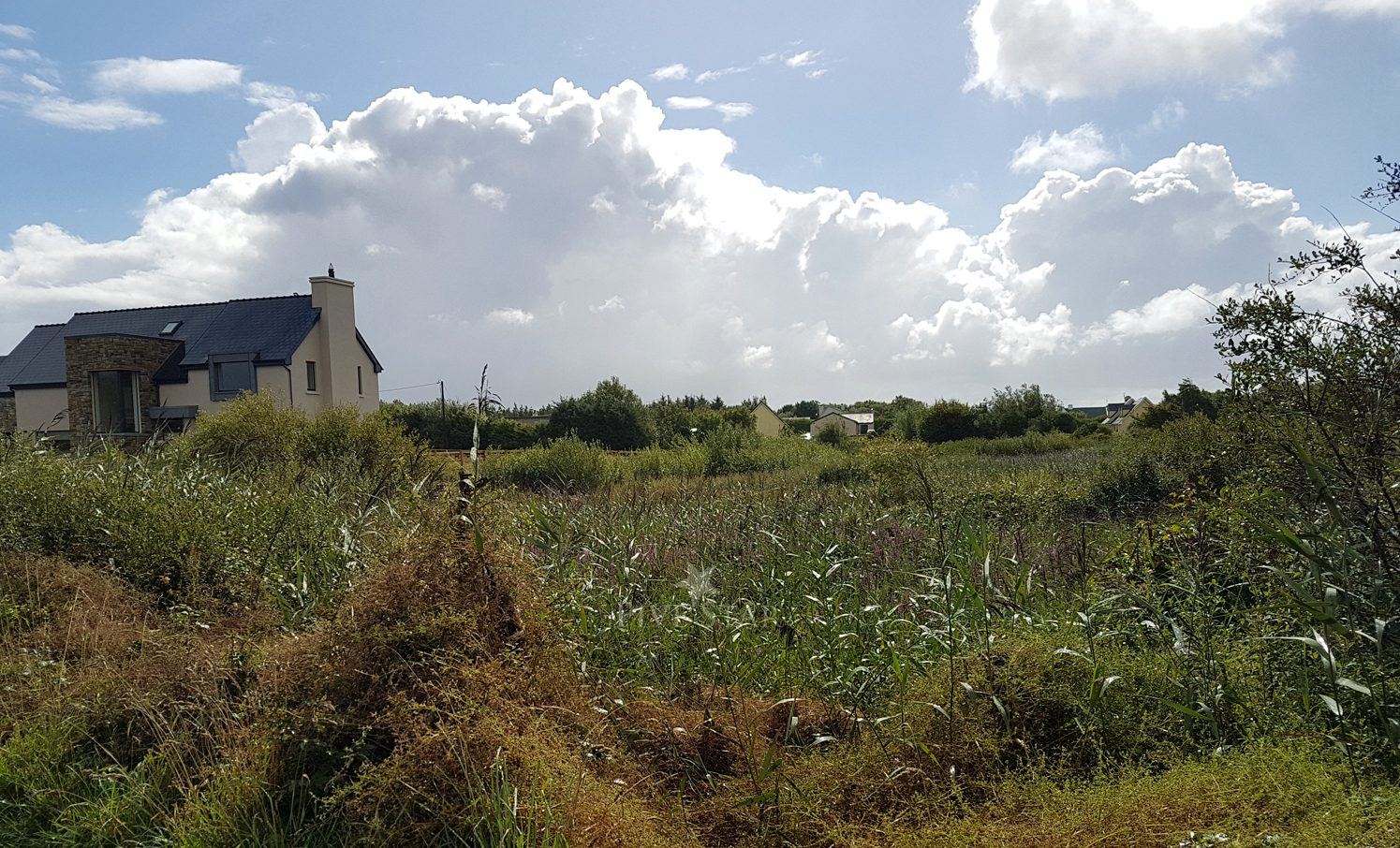 Barna Site For Sale photo 14