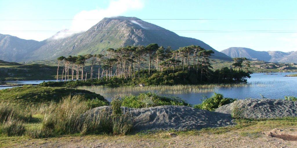 Ardbear Bay View photo 17