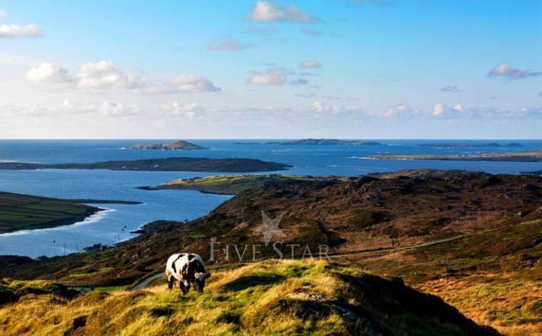 Connemara Dream Cottage photo 3